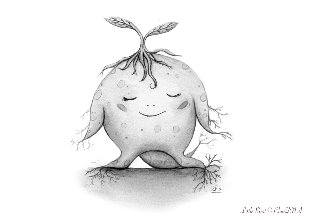 Little Root©ChiaDNA